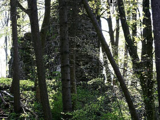 Burgruine Uprode - Weißdorf (DE)